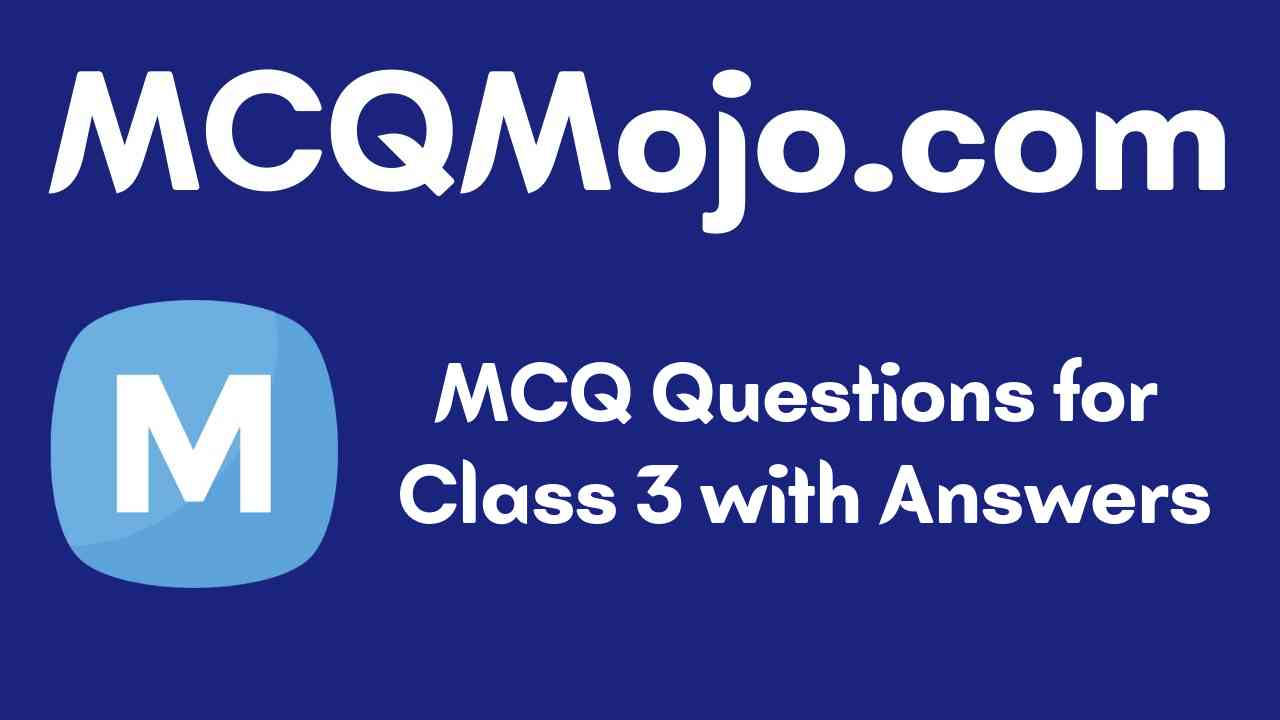 MCQ Questions for Class 3 with Answers